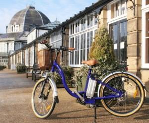 free 6 week electric bike service
